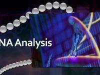 Η ολοκληρωμένη Γονιδιωματική Ανάλυση στην «υπηρεσία» της Εξατομικευμένης Θεραπείας