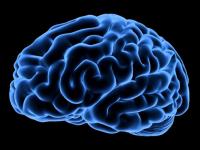 27ο Συνέδριο για τις Νευροεπιστήμες