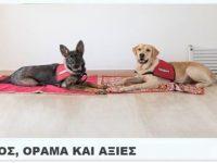 Ο Γιώργος και ο σκύλος του…