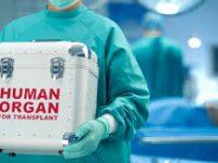6 Ιουνίου : Παγκόσμια Ημέρα Μεταμοσχεύσεων