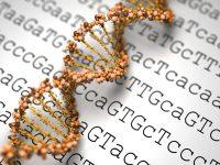 Η γονιδιακή αλληλουχία θα βοηθήσει την θεραπεία του καρκίνου της παιδικής ηλικίας