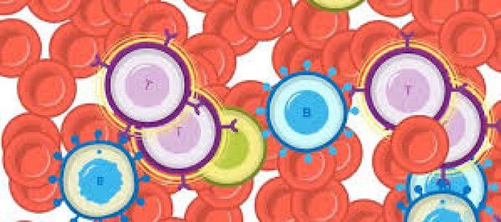 Τα CAR-T κύτταρα κερδίζουν τις μάχες ενάντια στον καρκίνο